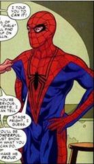 Spider-man wrestling costume